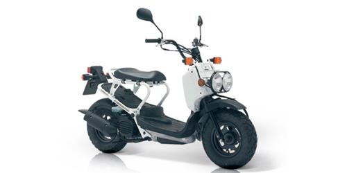 Honda Zoomer – Steve Loves It! - Steve Edge World - Steve Edge Design